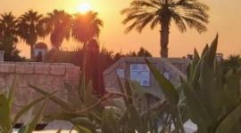 Поездка на Кипр – остров Афородиты! (ноябрь 2020)